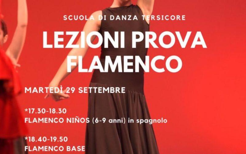 Lezioni di prova Flamenco